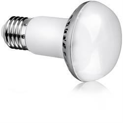 10 Watt Non-dimmable LED Lamp R63