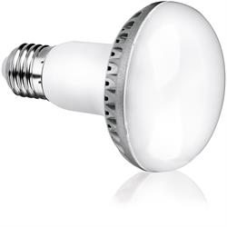 12 Watt Non-Dimmable LED Lamp R80